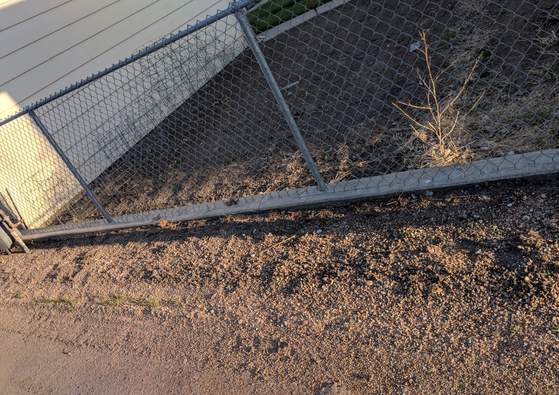 no weeds to catch trash