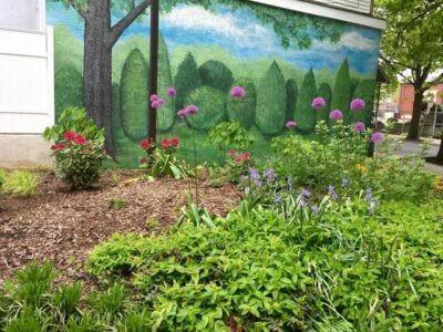 Spring at Reading Rising Park