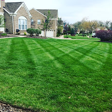 Lawn mowing including edging and trimming