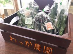 朝採れ野菜販売