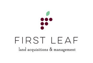 FirstLeafLogo_1.png
