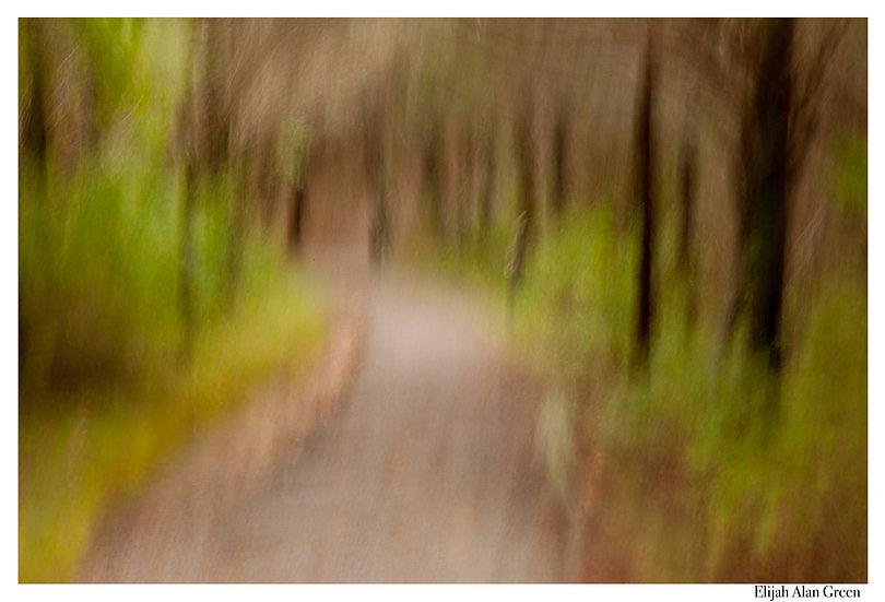 """Fort Hill Trail"""