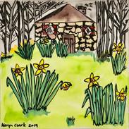 Irish Daffodils.jpg