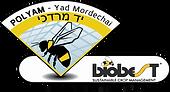 Polygam_Logo