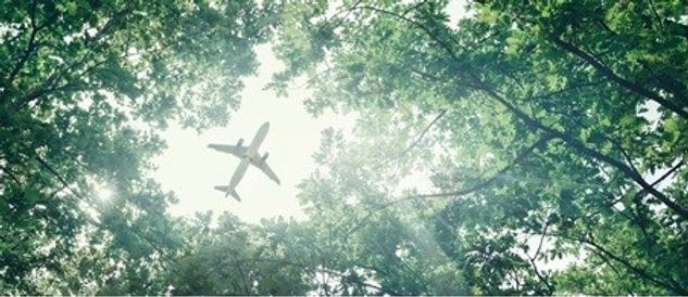avion eco (2).jpg