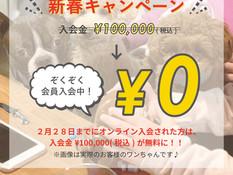 1・2月限定!新春特別キャンペーン実施中!