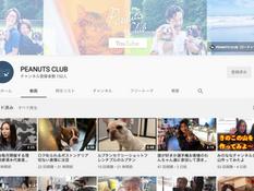 YouTubeチャンネルはじめました!