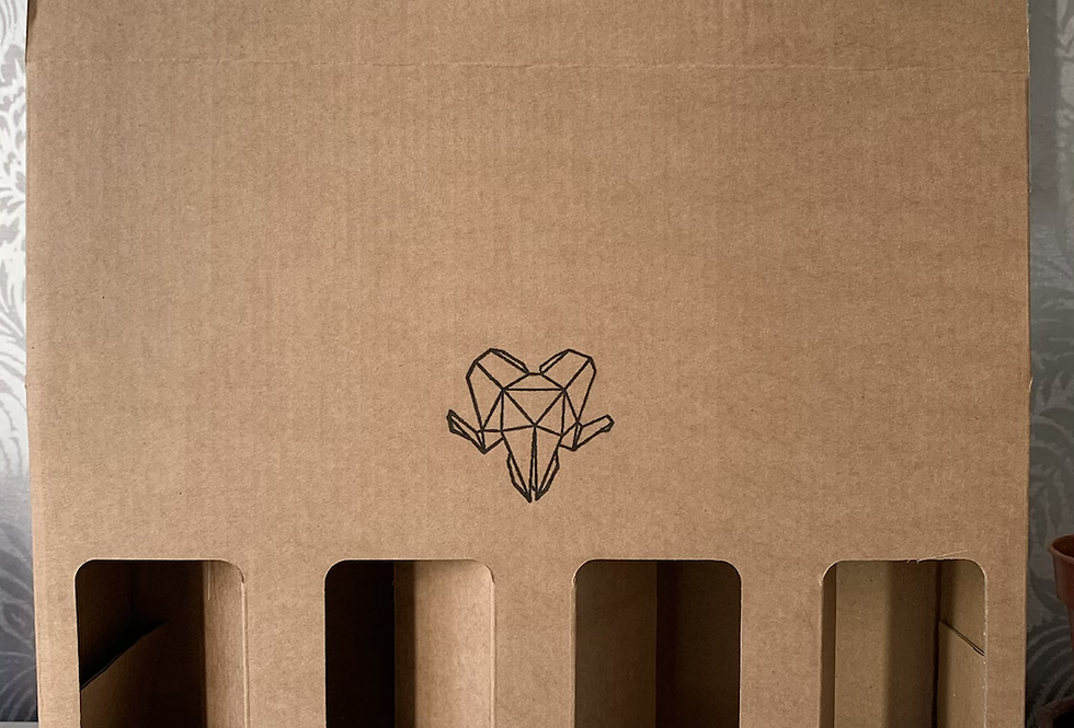 4 x 440ml can gift box