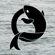 Team Nemo Logo