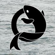 Team Nemo Logo