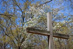 Springtime at Good Shepherd