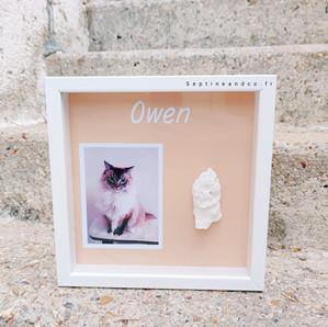 empreinte 3D animaux chien chat lapin mis en valeur dans son cadre personnalisé septine and co l'atelier du moulage france