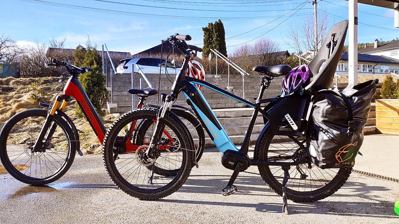 Gaupe II & Gazelle II.jpg