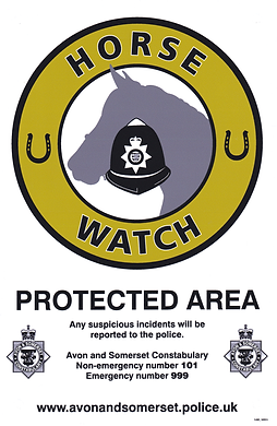 Horse Watch Sign_small.png