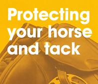 Protect Tack Thumb.png