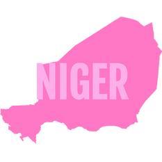 Niger_edited_edited.png