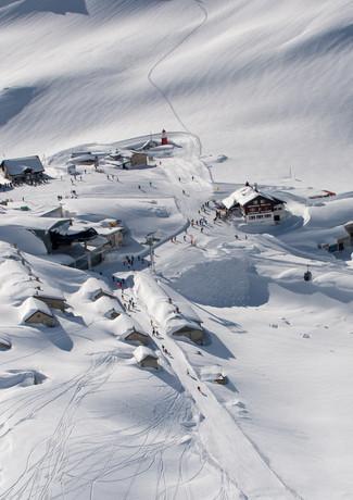 Winter by dsp. 2019-3.JPG