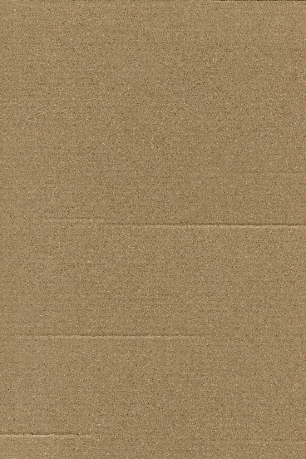 Clean Cardboard 14 verti.jpg