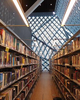 casey-marie-library.jpg
