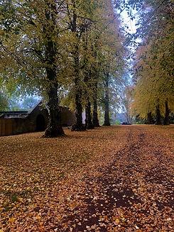 Autumn Braehead House.jpg
