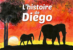 image histoire de Diego.png