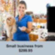 small  business tax return