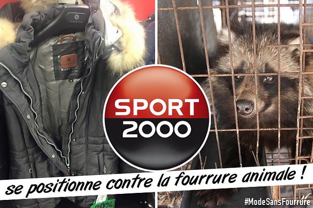 Fourrure 2000 La Se Animale Sport Positionne Contre tQshdrC