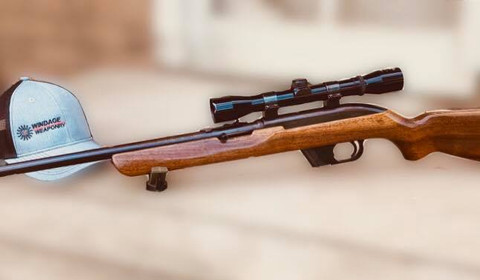 Winchester 22.1.jpg