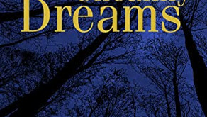 A Review - A Cauldron of Uncanny Dreams by Donald Firesmith
