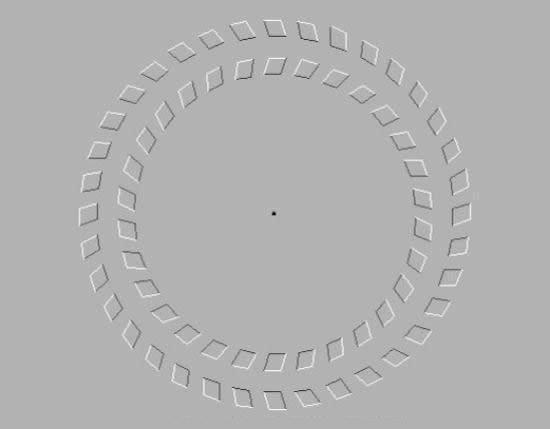 spiraldot-1.jpg