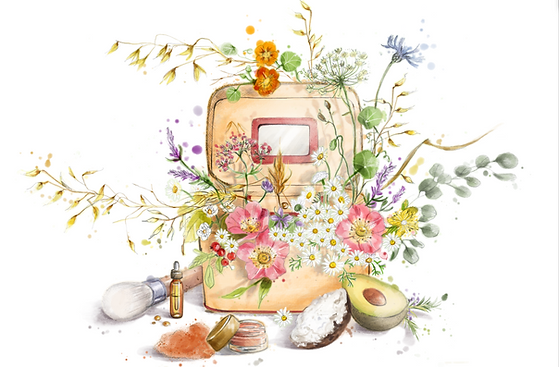 Livret de bienvenue - Camille Bellet Illustration
