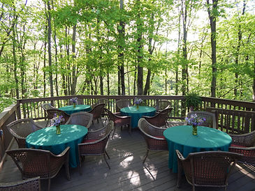 Wildlife Observation Deck surrounded by woods with purple flowers on the tables.