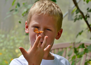 Young boy with butterfly on his finger