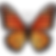 butterfly_1f98b (1).png