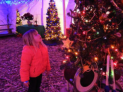 Young girl looking up at a decorated Christmas tree.