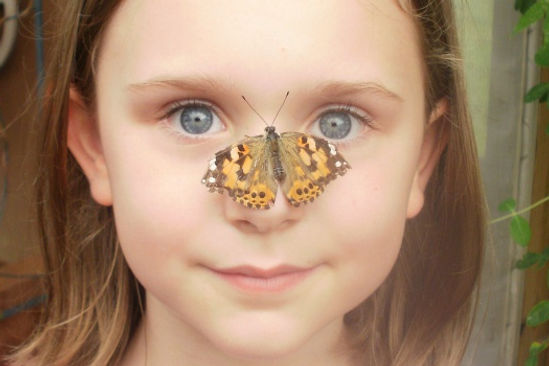 Young girl with a butterfly on her nose