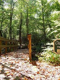 Beautiful hiking trail with wooden bridge