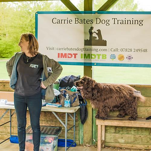 Carrie Bates Puppy Classes