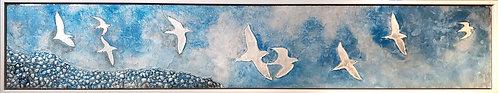 """Coastal Aerial """"In Flight"""" 9x48 framed"""