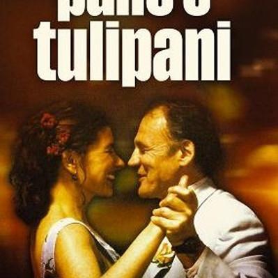 Film Pane e tulipani (italiano con sottotitoli in tedesco)
