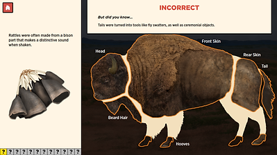 bison-incorrect-answer.png