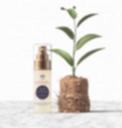 serum_with-plant.jpg