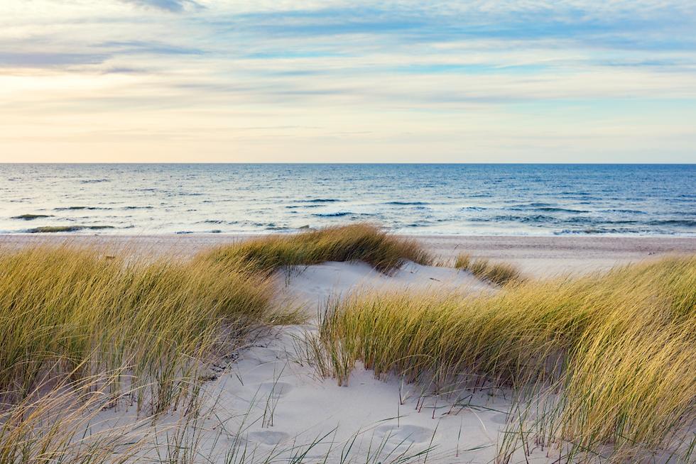 dunes.png