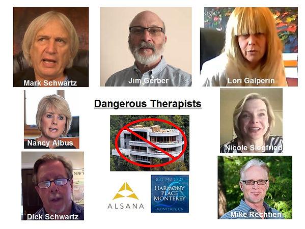 Alsana, Castlewood Treatment Center, Harmmony Place,Mark Schwartz, Jim Gerber, Dangerous Therapists