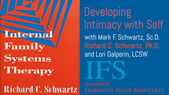 Internal Family Systems (IFS) Founder Now Claims Schwartz & Castlewood Misused Therapy Model