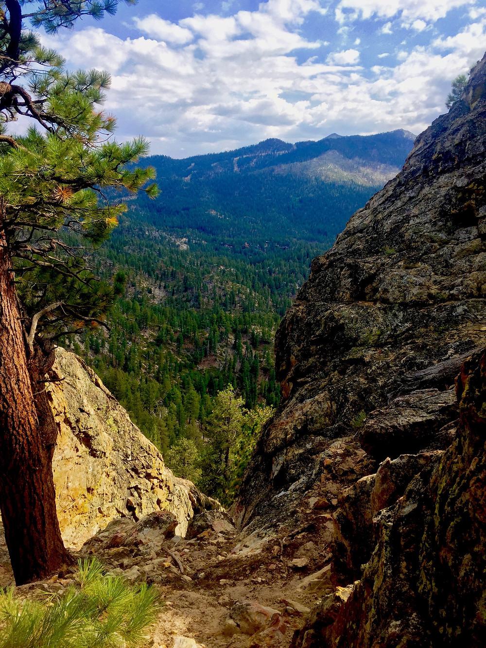 Take a hike, preferably around Tahoe.