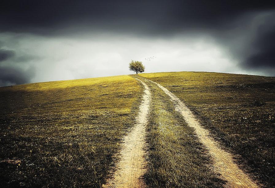 healthy-landscape-heart-field-36024.jpg