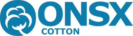 Logo _ONSX_recortada_azul.png