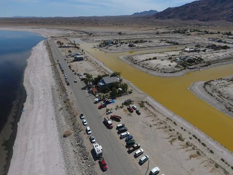 Earth Day Salton Sea, Desert Shores