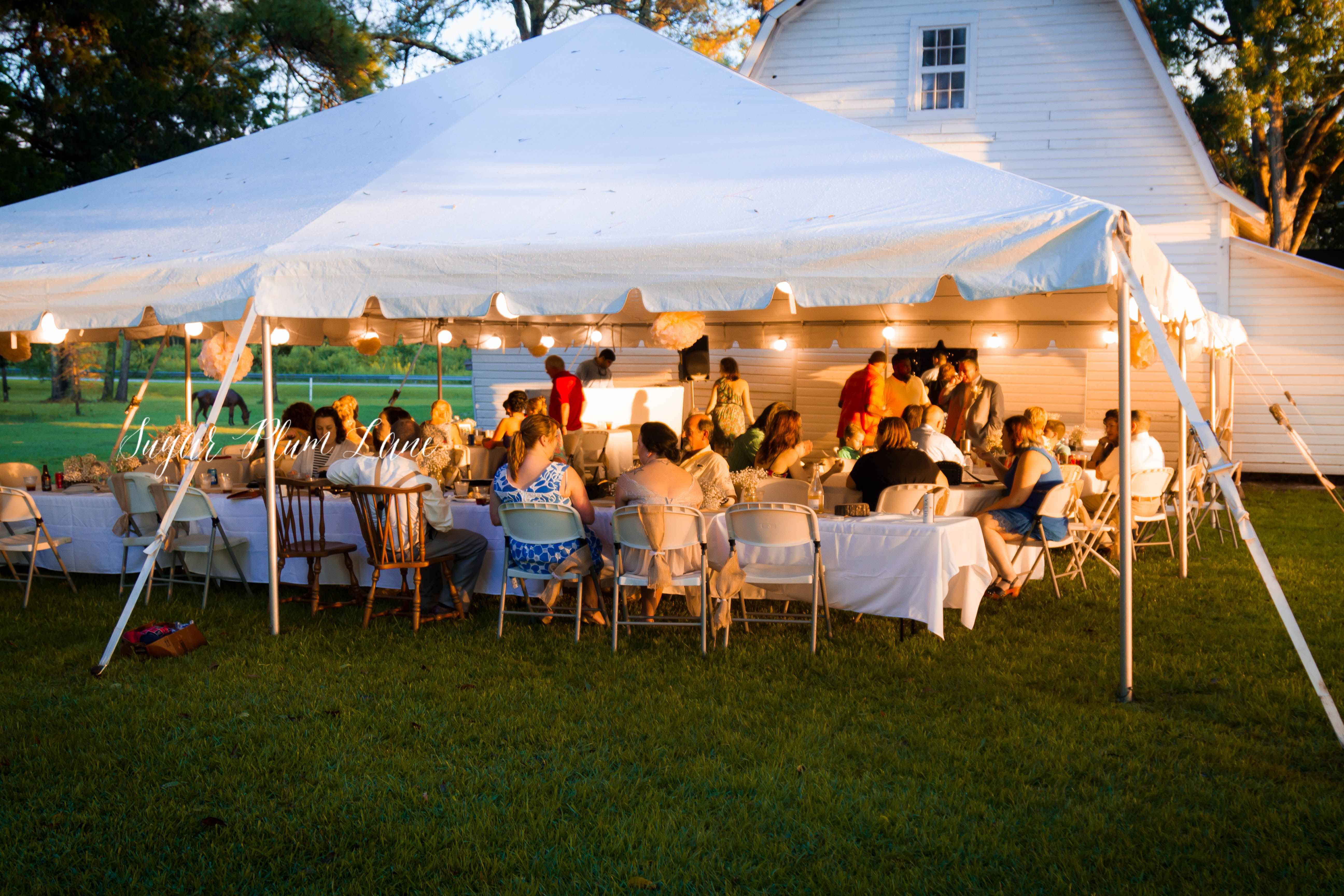 Pine Log Plantation Mcpherson Wedding (10)